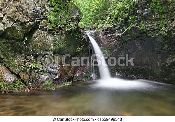 Cascada en el arroyo plateado, la República Checa - csp59499548