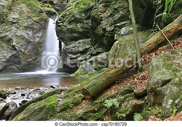 Cascada en el arroyo plateado, la República Checa - csp70180729