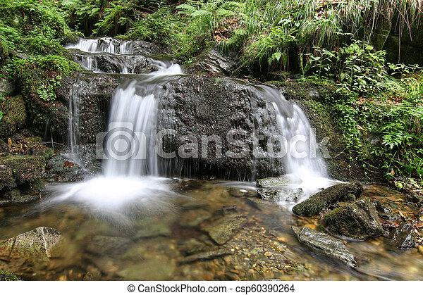 Cascada en el arroyo plateado, la República Checa - csp60390264