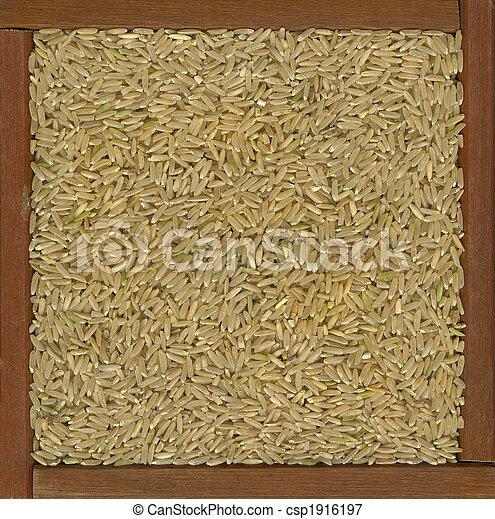 arroz marrom, grão, longo, fundo - csp1916197