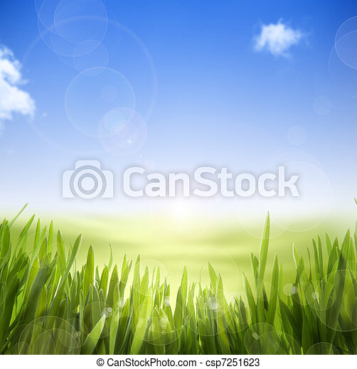 art abstract Spring nature background of spring grass and sky - csp7251623