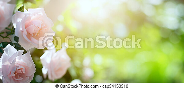 art Abstract spring or summer floral background - csp34150310