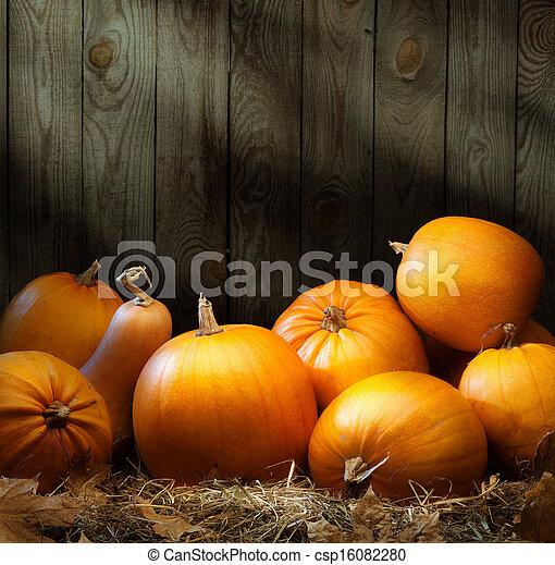 Art autumn Pumpkin thanksgiving backgrounds - csp16082280