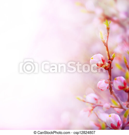 art Beautiful spring blossoming tree on sky background - csp12824807