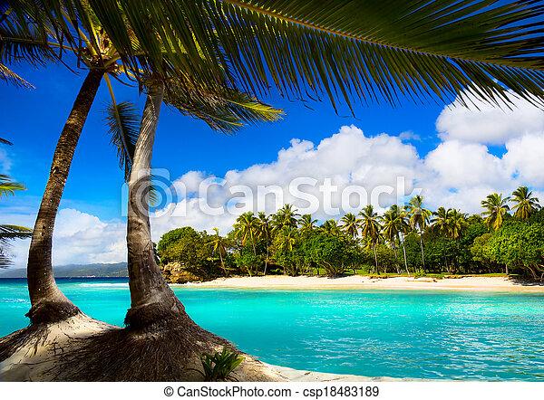Art caribbean tropical sea  lagoon - csp18483189