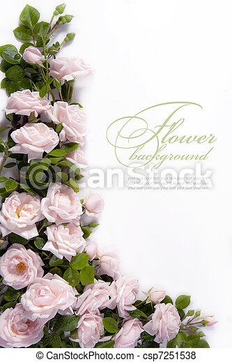 Art flower Background for greeting card - csp7251538