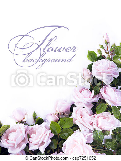 Art flower Background for greeting card - csp7251652