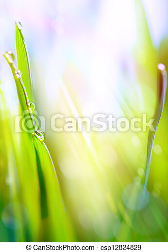 art green spring abstract light background - csp12824829
