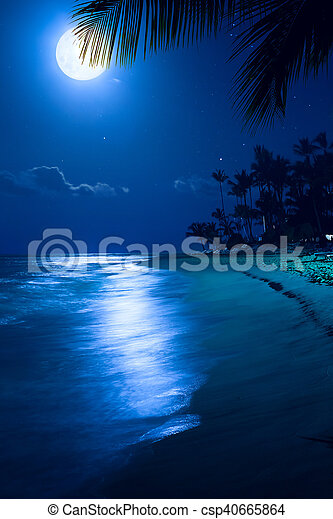 Art Moonlight Tropical Sea Beach Night Vacation At The Palms Resort