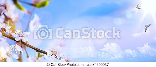 art Spring blossom background - csp34509037