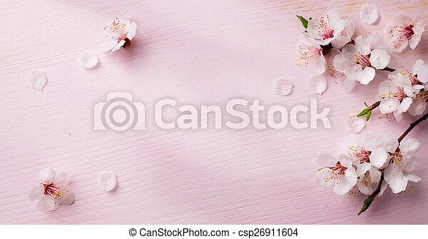 art spring flowers frame background - csp26911604