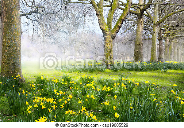 Art spring flowers in the english park stock photo search pictures art spring flowers in the english park csp19005529 mightylinksfo Choice Image