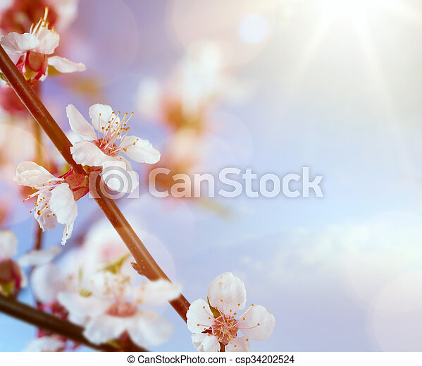 art spring flowers on the blue sky background - csp34202524