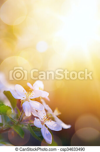 art spring flowers on the sky background - csp34633490