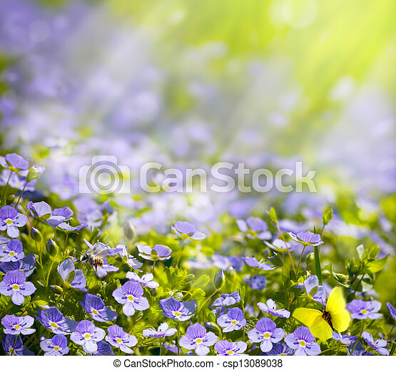 art spring wild flowers in the sunlight background - csp13089038