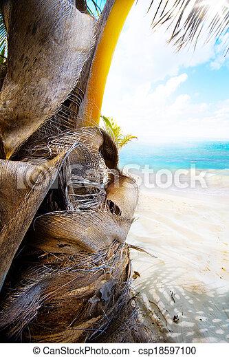 art summer tropical beach - csp18597100