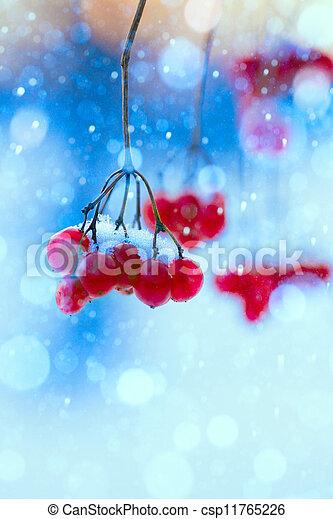art winter nature  - csp11765226