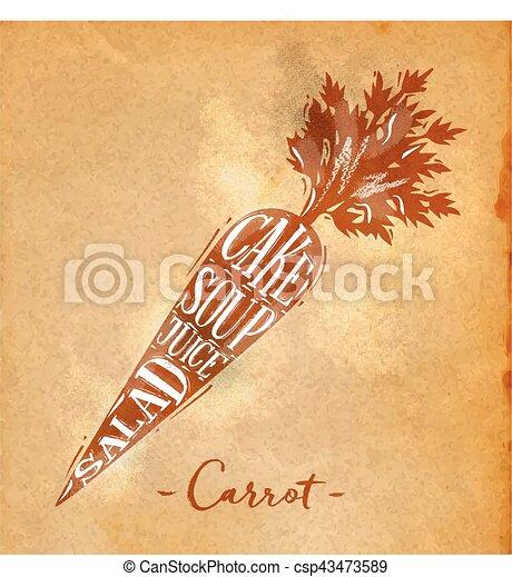 arte, corte, esquema, zanahoria - csp43473589