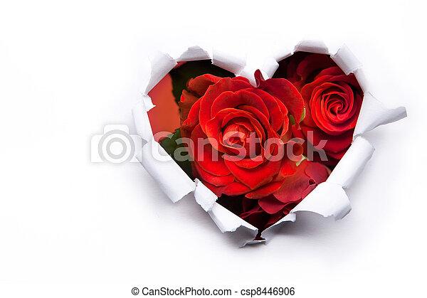 Un ramo de rosas rojas y corazones de papel en San Valentín - csp8446906