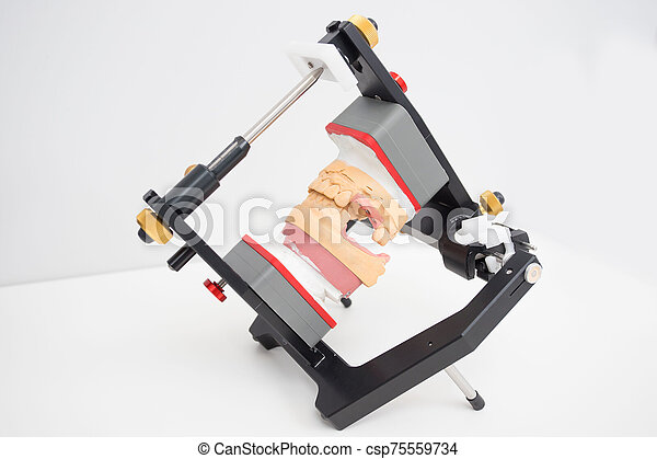 articulator with jaw model in the dental laboratory - csp75559734