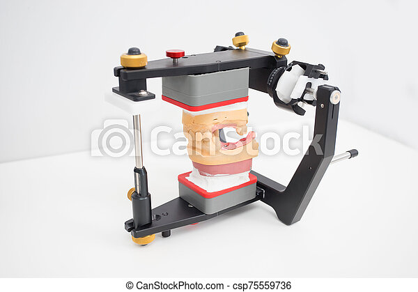 articulator with jaw model in the dental laboratory - csp75559736