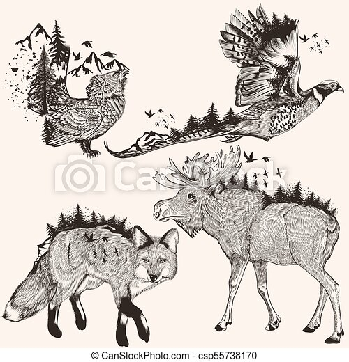 Artistic collection of hand drawn animals.eps - csp55738170