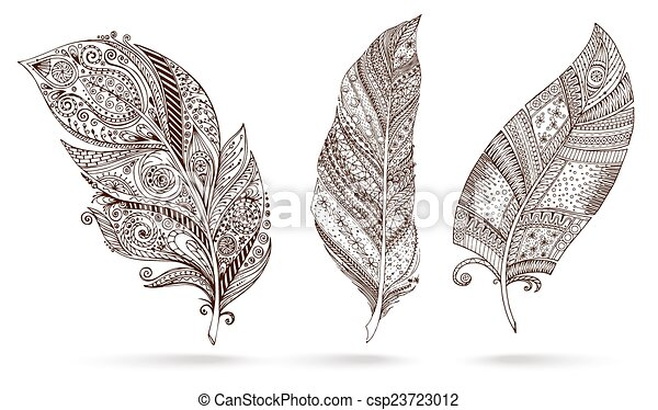 Artistically drawn, stylized, vector set of feathers - csp23723012