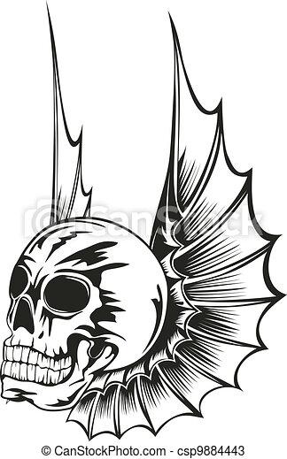 asas, cranio - csp9884443