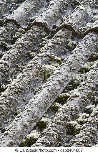 Asbest Eternit Dach Winter Hulle Detail Dach Kalte Eternit