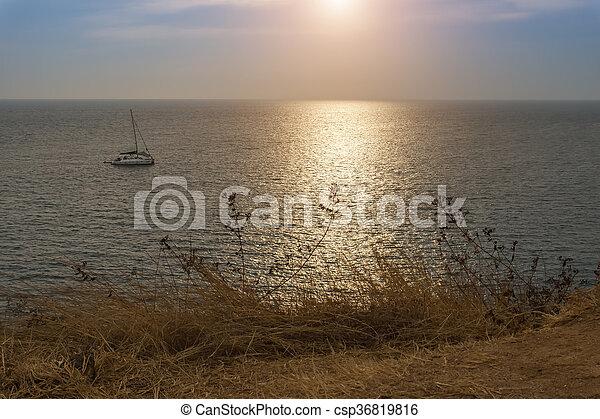 asciutto, marina, phrom, thailand., laem, thep, erba - csp36819816