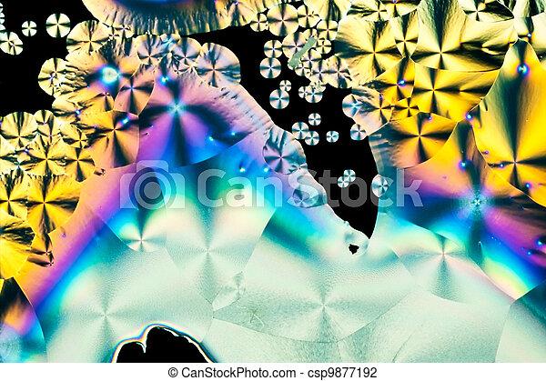 Ascorbic acid crystals in polarized light - csp9877192
