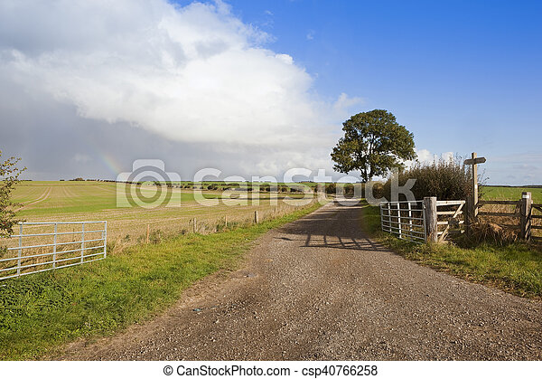 ash tree and farm gate - csp40766258