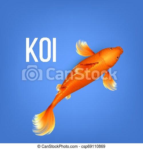 Asian Decorative Orange Koi Golden Fish Vector - csp69110869