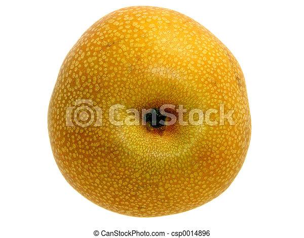 Asian Pear Bottom - csp0014896