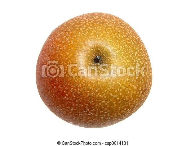 Asian Pear Top - csp0014131