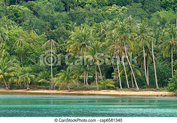 asian tropical beach - csp6581340
