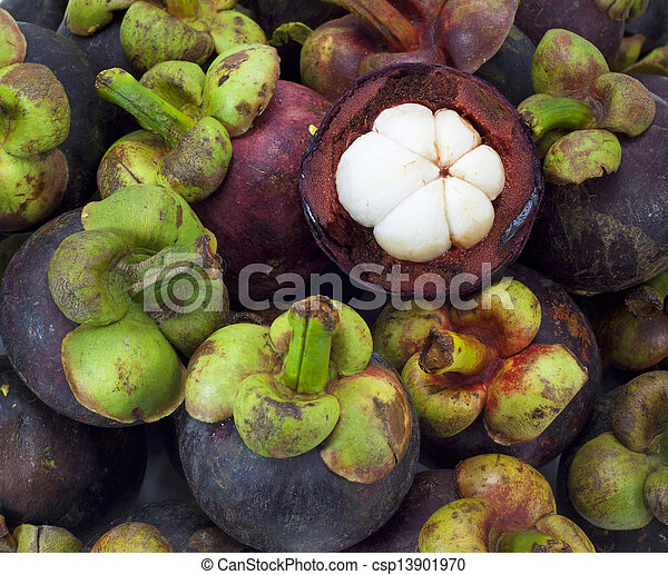 asian tropical mangosteen fruit on white background - csp13901970