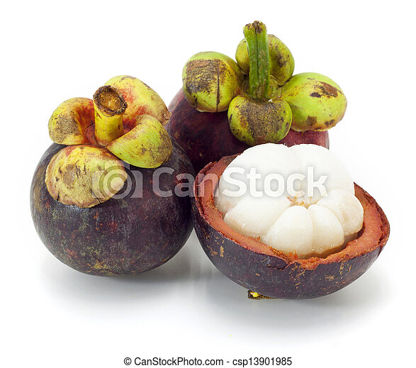 asian tropical mangosteen fruit on white background - csp13901985