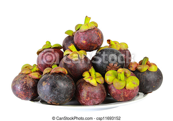 asian tropical mangosteen fruit on white background - csp11693152