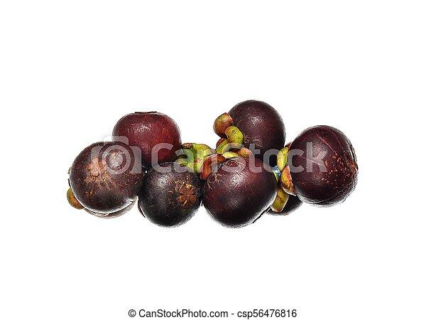 asian tropical mangosteen fruit - csp56476816