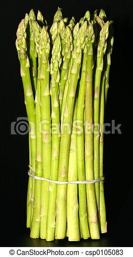 aspargo lanceia - csp0105083