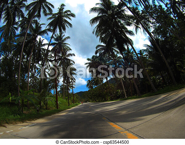 Asphalt road with nature and wildlife views in the middle of the jungle in Thailand National Park. - csp63544500