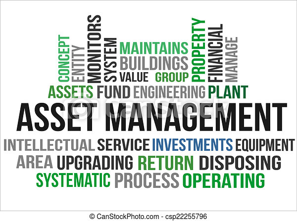 ASSET MANAGEMENT - csp22255796