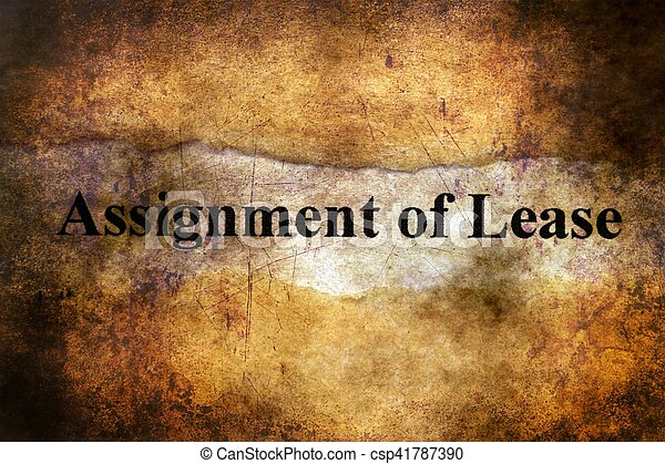 Assignment of lease text on torn paper - csp41787390