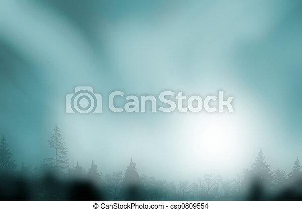 assombrado, floresta, nebuloso - csp0809554