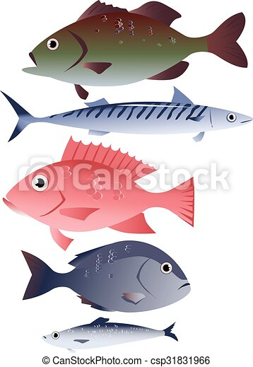 Assorted edible fish - csp31831966