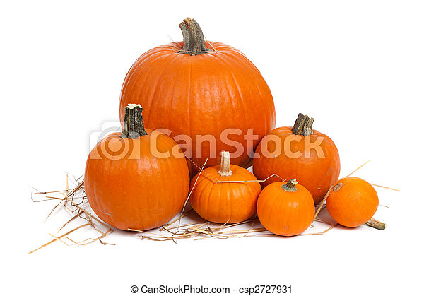 Assorted pumpkins with straw on white  - csp2727931