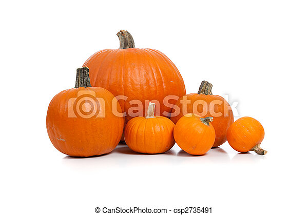 Assorted pumpkins with straw on white  - csp2735491