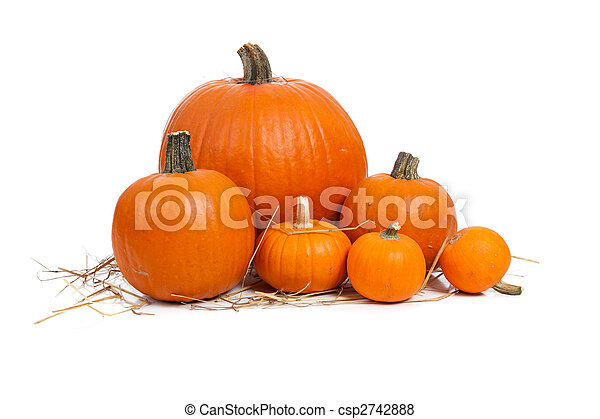 Assorted pumpkins with straw on white  - csp2742888