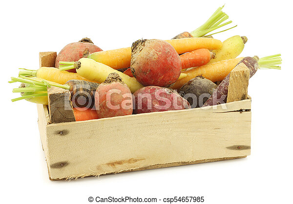 assorted root vegetables in a wooden crate - csp54657985